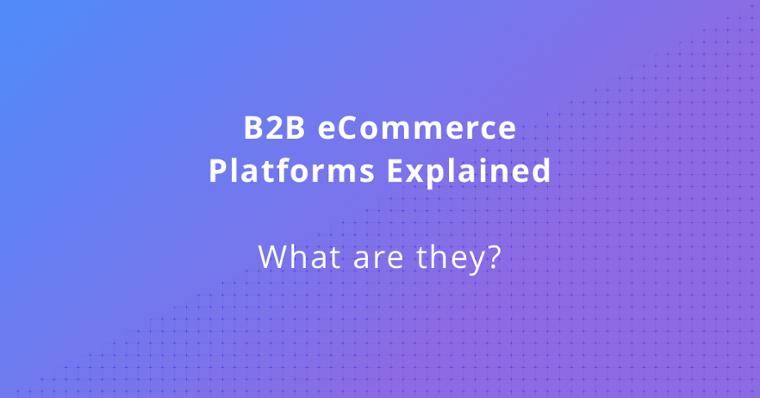 What Is a B2B eCommerce Platform?