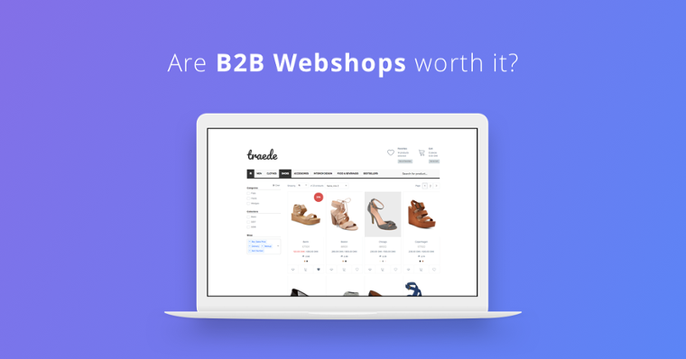 What Is a B2B Webshop?